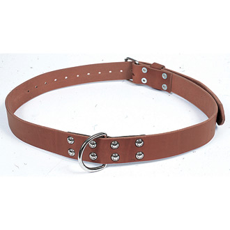 Gould & Goodrich Humane Restraint Leather Restraint Belt