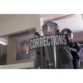 """Paulson Concave Riot Shield 48"""" x 24"""" x 1/8"""""""