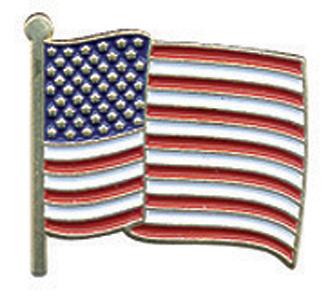 "Hero's Pride Enameled USA Flag Pin (3/4"" high)"