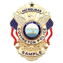Blackinton Eagle Over Flags Badge