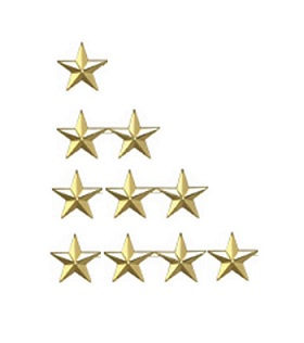 LawPro Star Insignia Set